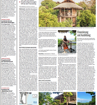 eco-treehouse-newspaper.png