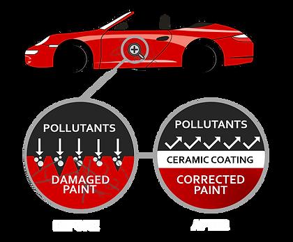 Ceramic Coating Car Diagram Paint.png