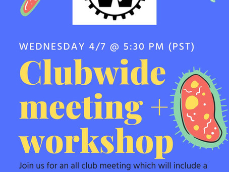 BWB Spring Meeting