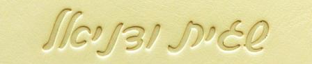 כתב עברית