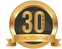 SELO-30-ANOS-CH.png