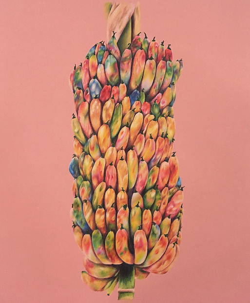 Racimo. 40_x 28_. Colored pencil on mat