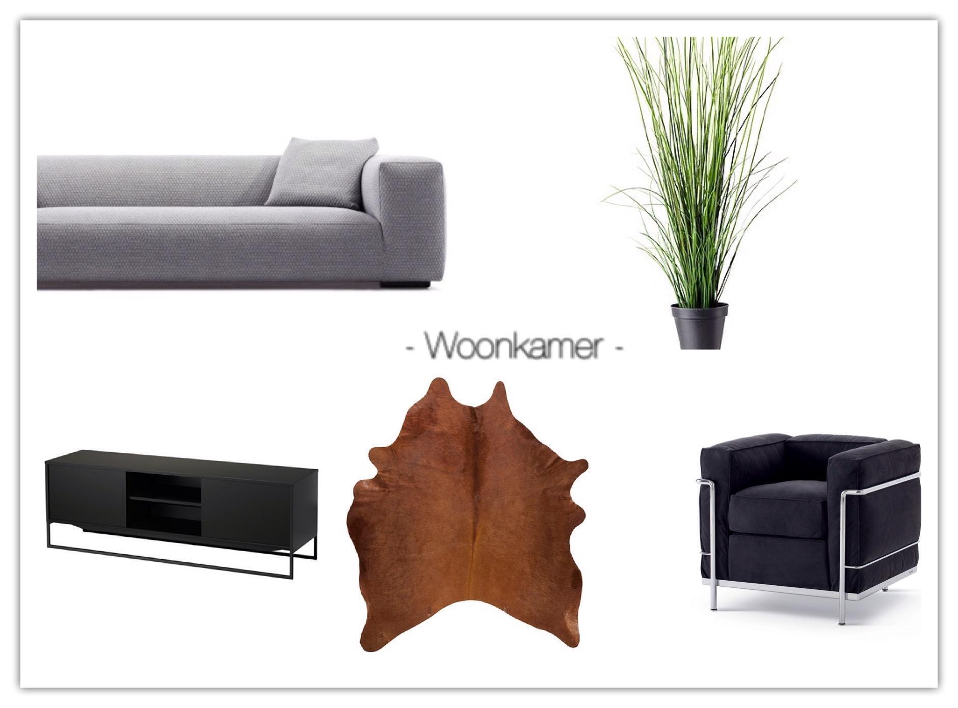 modern woonkamer homestaging EmNi