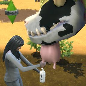 Cowplant Farming