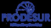 Logotipo Prodesur Edificación y Servicios
