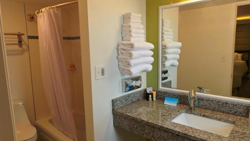 photo of vanity, towel rack, toilet and bathtub/shower entry
