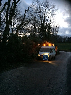 24hr call out tree work | East Devon