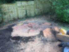 JJ Tree Services   Stump Grinding   East Devon