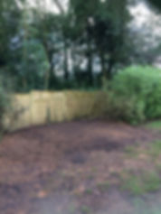 JJ Tree Services   Stump Grinding, East Devon