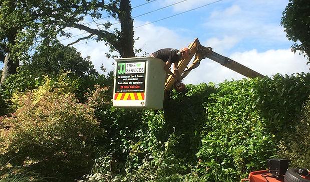 Hedge trimming | West Hill, East Devon