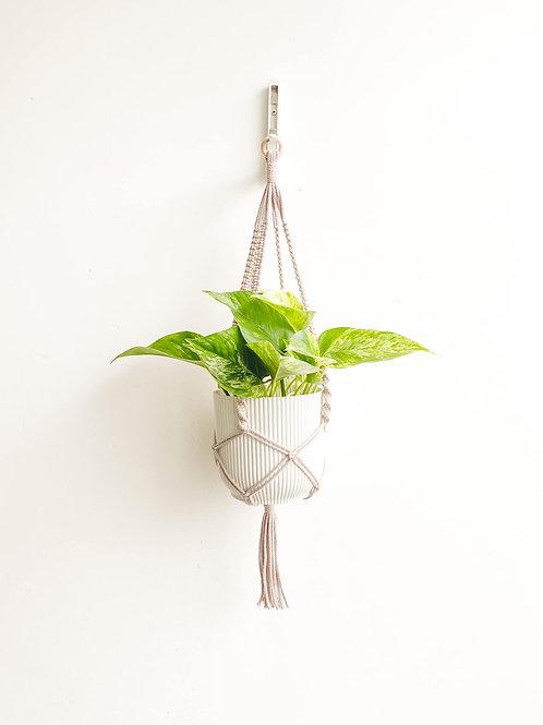 Macrame Plant Hanger - Taupe