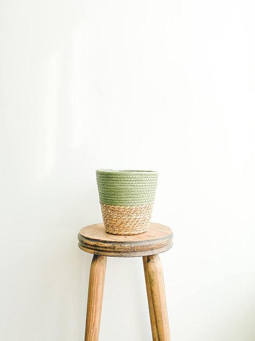 Two Tone Seagrass Basket - Sage Green