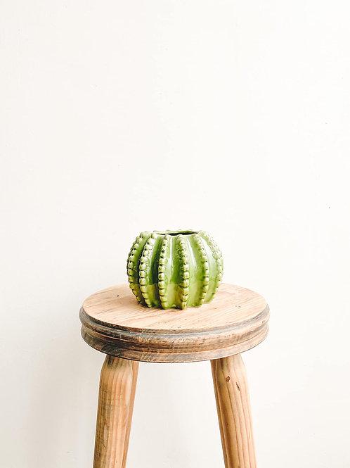 Cactus Ceramic Pot