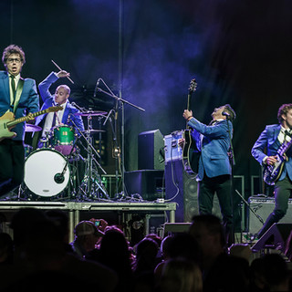 The Dreamboats Band in Action