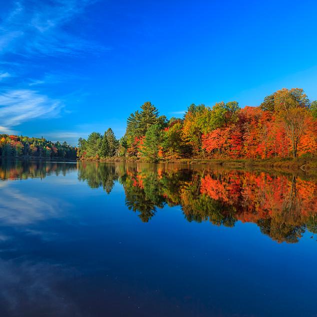 Autumn Morning, Muskoka