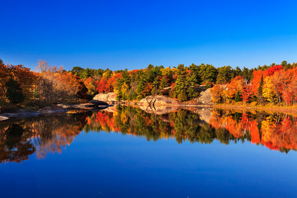 Autumn Splendor, Mississaugi River