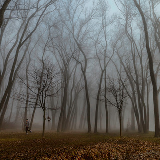 Foggy Day Jogger