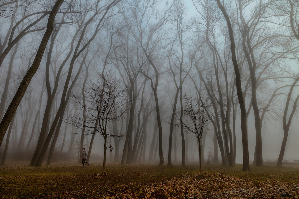 Foggy Day Jogger