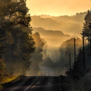 Magical Autumn Morning
