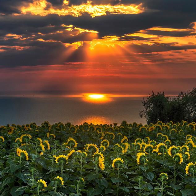 Sunrise over the Adriatic