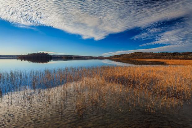 Gordon Lake November Skies