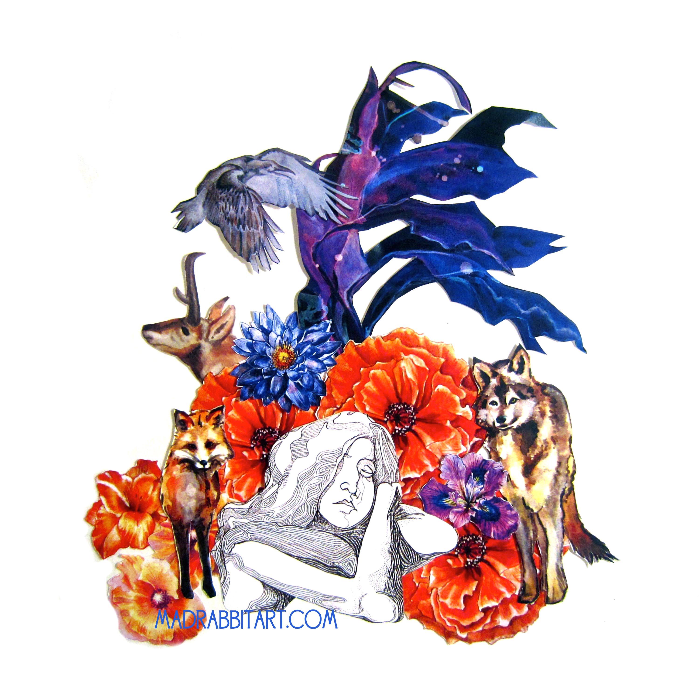 Raven Dreamer