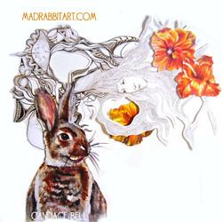 Rabbit Meets Mushroom Head
