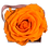Thumbnail: 1 Rose Eternelle Orange Vibrant - Box carrée Rose Poudré