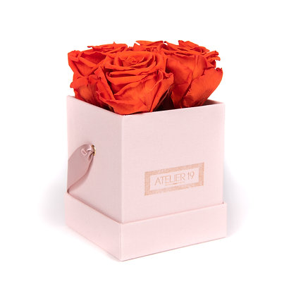 4 Eternal Roses - Vibrant Orange - Powder Pink square Box