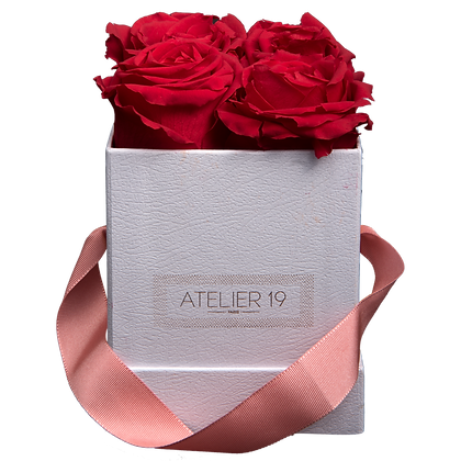 CLASSIC 4 ETERNAL ROSES - PASSION RED - WHITE SQUARE BOX
