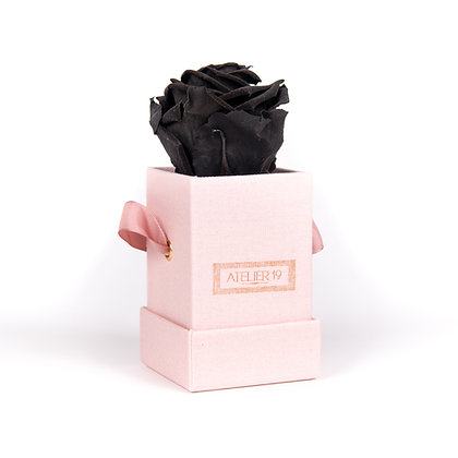 1 Eternal Rose - Deep Black - Powder Pink square Box