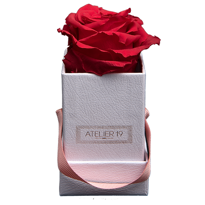 1 Rose Eternelle Rouge Passion - Box carrée Blanche