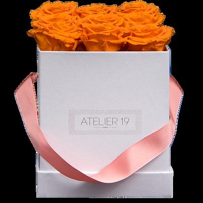 PLUS 9 ETERNAL ROSES - VIBRANT ORANGE - WHITE SQUARE BOX