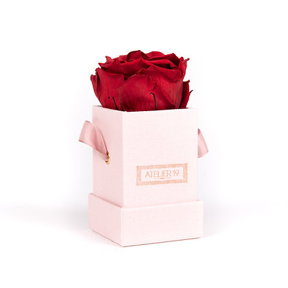 1 Eternal Rose - Intense Carmine - Powder Pink square Box