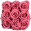 Box Banche 9 roses éternelles Bois de Rose Dessus