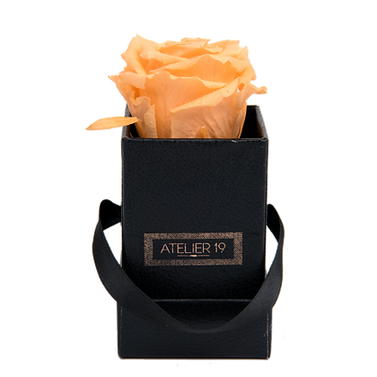 1 Eternal Rose - Velvety Peach - Black square Box