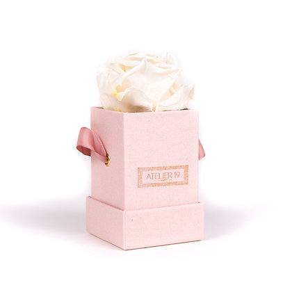 1 Eternal Rose - Pure White - Powder Pink square Box