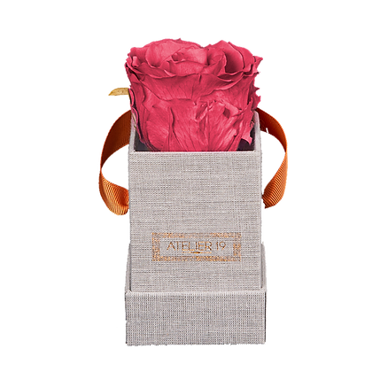 1 Rose Eternelle Bois de Rose - Box carrée Grise
