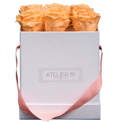 PLUS 9 ETERNAL ROSES - VELVETY PEACH - WHITE SQUARE BOX