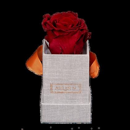 1 Rose Eternelle Carmin Intense - Box carrée Grise