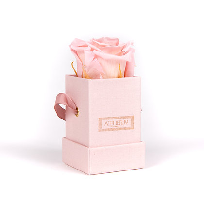 1 Rose Eternelle Rose Tendre - Box carrée Rose Poudré