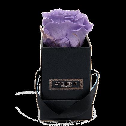 1 Rose Eternelle Parme Doux - Box carrée Noire