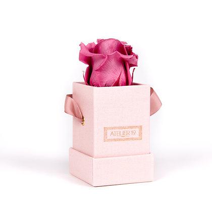 1 Eternal Rose - Rosewood - Powder Pink square Box