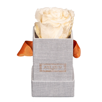 1 Eternal Rose - Champagne - Grey square Box