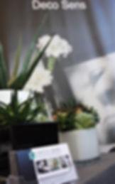 Belles plantes artificielles deco sens - Vente et location de fleurs et plantes artificielle