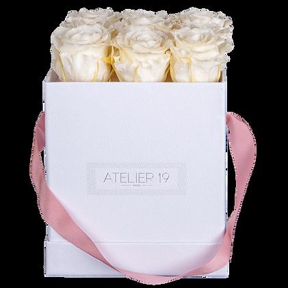 9 Roses Eternelles Champagne - Box carrée Blanche