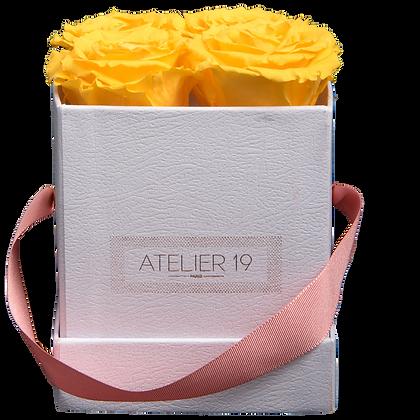 4 Roses Eternelles Jaune d'Or - Box carrée Blanche