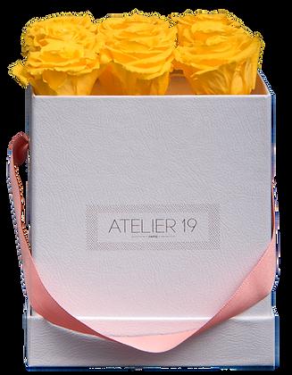 9 Roses Eternelles Jaune d'Or - Box carrée Blanche