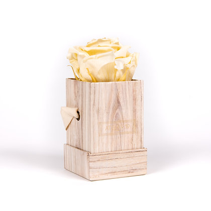 1 Eternal Rose - Champagne - Light Wood square Box