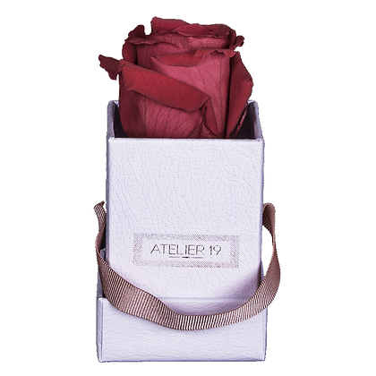 1 Rose Eternelle Carmin Intense - Box carrée Blanche